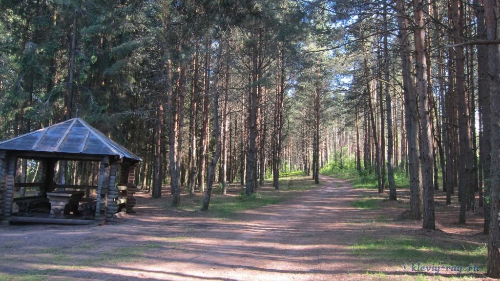 место отдыха с палаткой, озеро Струсто, Браславские озера, Пантелеевский рог, рыбалка