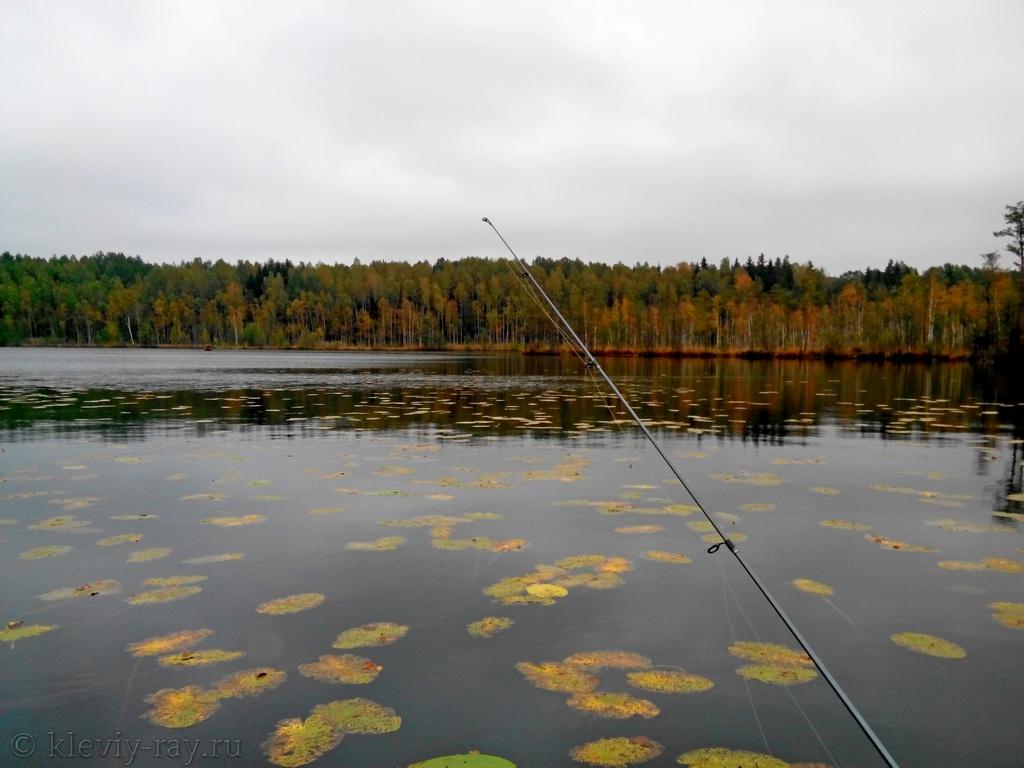 витебские водоемы для рыбалки