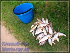 Рыбалка на Браславских озерах Беларуси