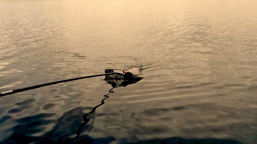 Кукан рыболовный скоро пригодится