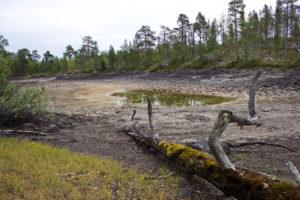 Катаклизм и экология
