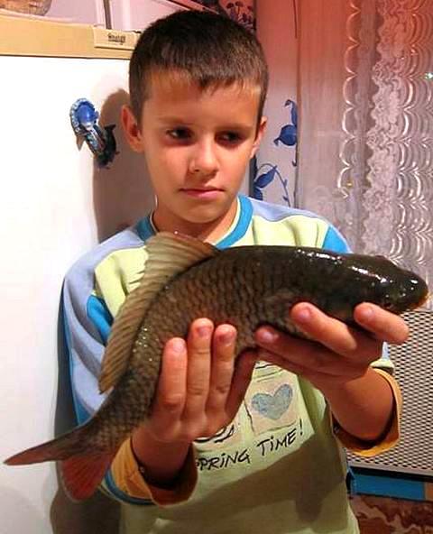 Рыболовные места Беларуси на реках будут бесплатны, но не все! А какие?