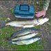 Рыбалка на Браславских озерах Витебской области Беларуси. Часть 1 | Как поймать 35 кг. белой рыбы за 3 дня.